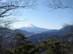 高川山からの富士.jpg