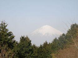 20090318_富士.jpg