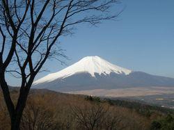 20090409_富士.jpg