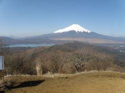20090409_杓子と山中富士.jpg