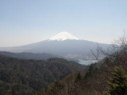 20090409_杓子富士2.jpg