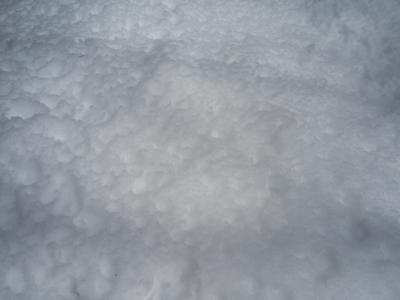 20120229 雪.jpg
