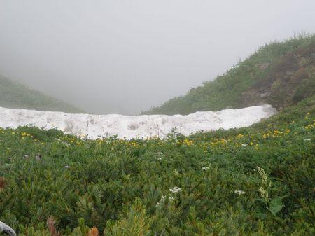 残雪と花畑鹿島.jpg