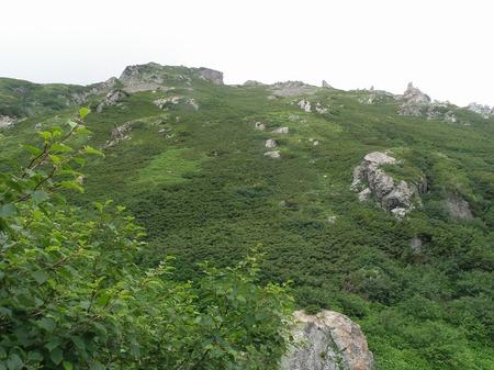 s-這い松と岩.jpg