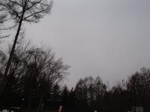 20121223.jpg