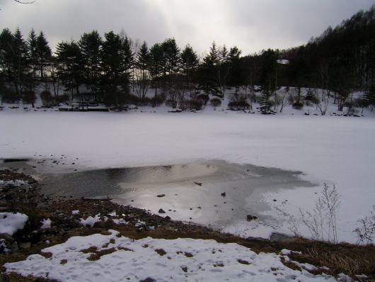 からまつ池結氷.jpg