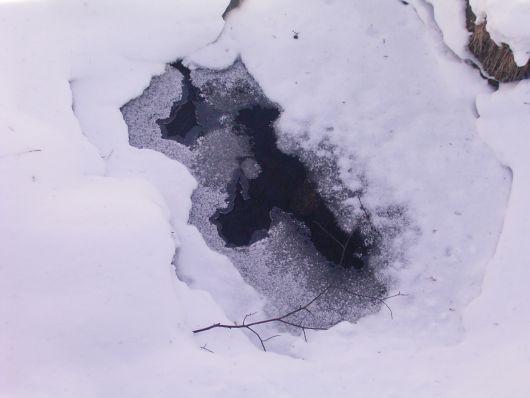 今日の氷 2.4.jpg