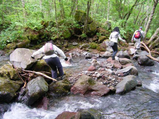 川を渡る石.jpg