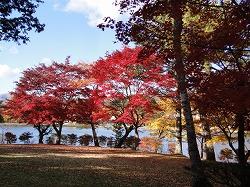 蓼科湖121107.jpg