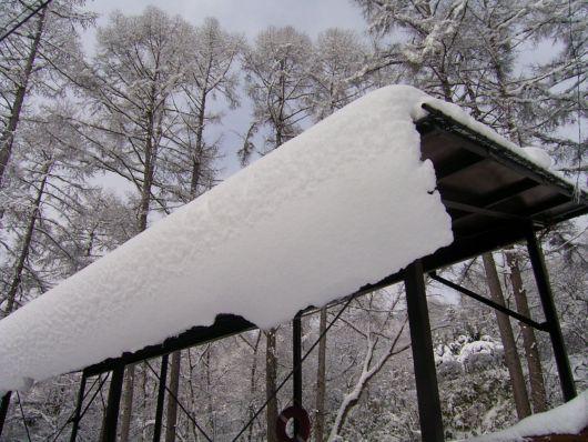 釣堀の屋根.jpg
