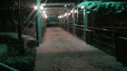 雪が降った様子.jpg