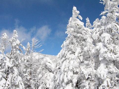 2.170201樹氷.JPG