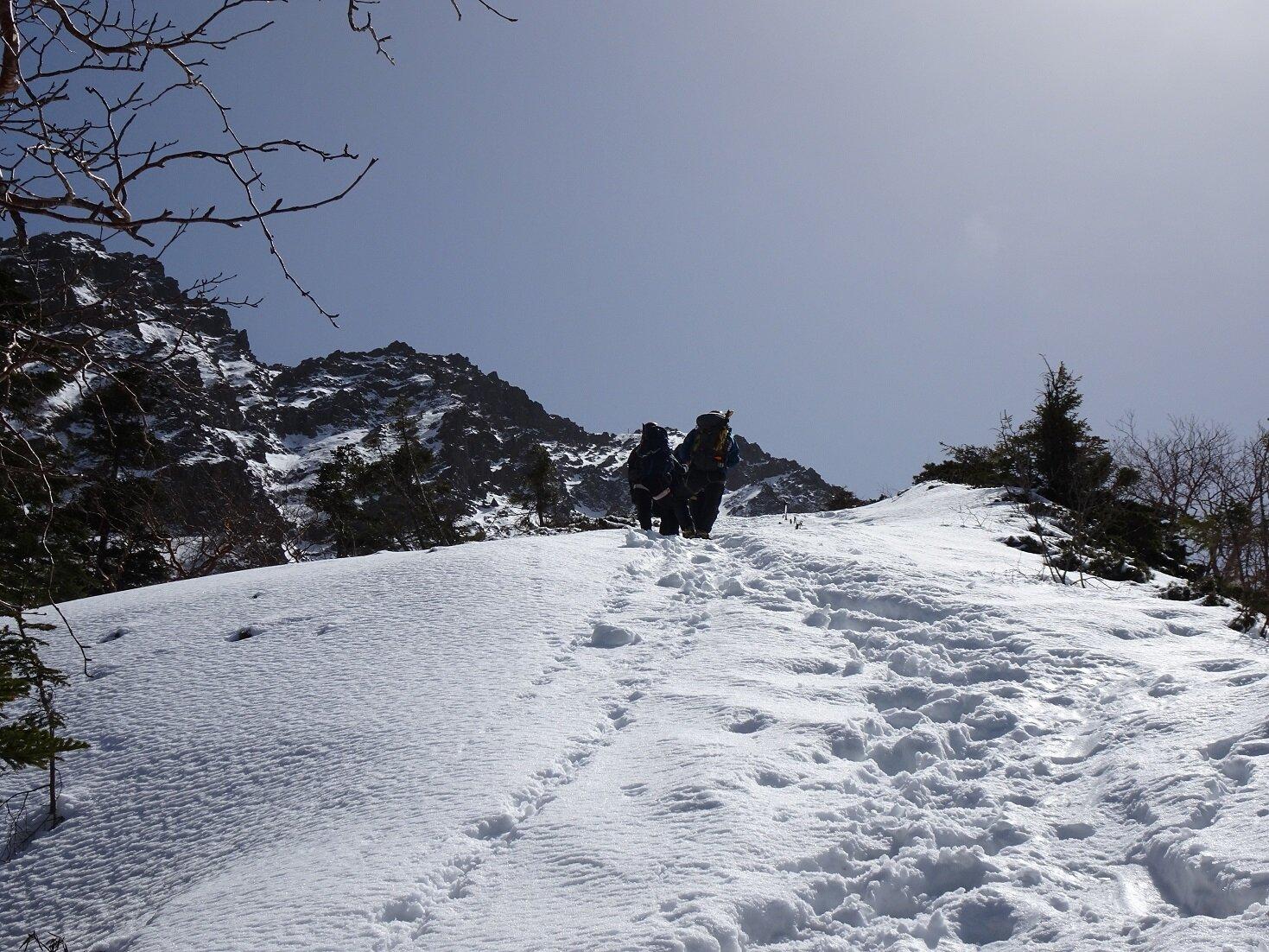 ブログ用写真登山道image1.jpg