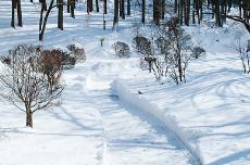 2008_winter06.jpg